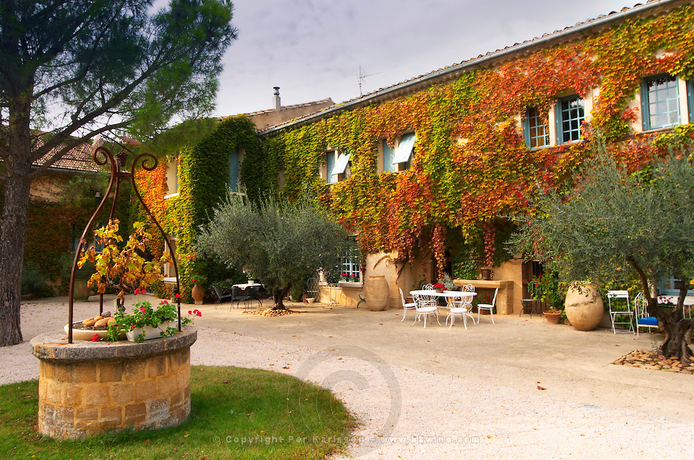 The main building covered with vine with olive trees and a water well Chateau de Beaucastel, Domaines Perrin, Courthézon Courthezon Vaucluse France Europe
