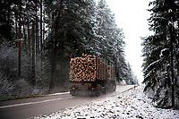 Podlasie, 30.11.2020. Pierwsze wieksze opady sniegu na Podlasiu tej zimy N/z samochod wywozacy sciete drewno z Puszczy Knyszynskiej fot Michal Kosc / AGENCJA WSCHOD