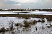 Nederland, Deest, 11-2-2020 In de rivier de Waal is het verhoogd water. Het rivierwater is de uiterwaarden ingelopen en staat tot aan de voet van de dijk . Het scheepvaartverkeer heeft er geen last van. Foto: Flip Franssen
