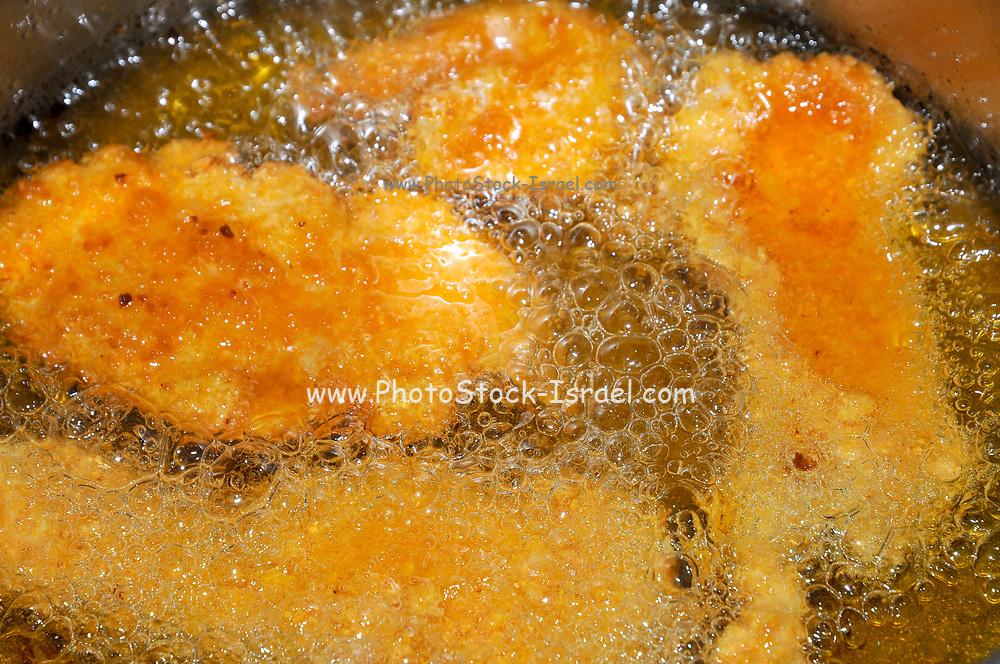 Preparing schnitzel deep fried breaded chicken breast. Frying