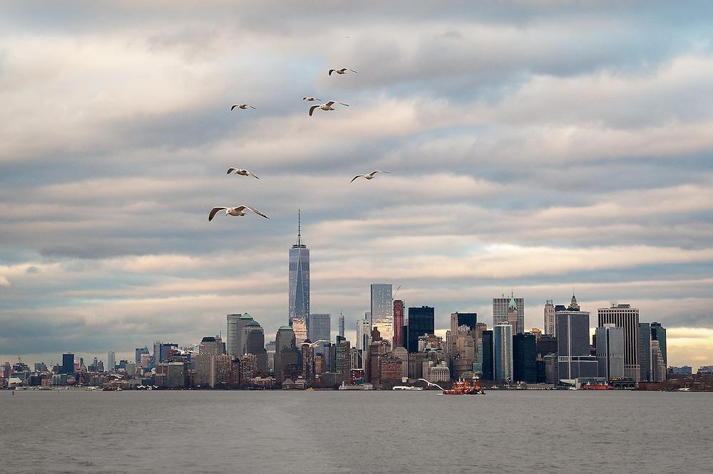 """Seagull Skyline""<br /> Lower Manhattan<br /> New York City"
