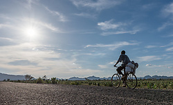 31 May 2019, Mokolo, Cameroon: A man rides his bike along the road to Mokong, in the Mayo-Tsanaga department, far north region, Cameroon.