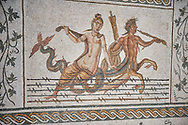 Picture of a Roman mosaics design depicting scenes from the Life of Dionysus, a scene with Ichthyocentaurs, fish tailed centaurs and Nereids, from the ancient Roman city of Thysdrus, House of Silenus. Late 2nd to early 3rd century AD. El Djem Archaeological Museum, El Djem, Tunisia. .<br /> <br /> If you prefer to buy from our ALAMY PHOTO LIBRARY  Collection visit : https://www.alamy.com/portfolio/paul-williams-funkystock/roman-mosaic.html  . Type -   El Djem   - into the LOWER SEARCH WITHIN GALLERY box. Refine search by adding background colour, place, museum etc<br /> <br /> Visit our ROMAN MOSAIC PHOTO COLLECTIONS for more photos to download  as wall art prints https://funkystock.photoshelter.com/gallery-collection/Roman-Mosaics-Art-Pictures-Images/C0000LcfNel7FpLI