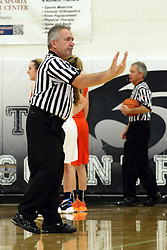20 November 2015: Rich Caccatori calls the shove. Normal Community Lady Ironmen v Bloomington Central Catholic Lady Saints at Girls Intercity in the gym at Normal Community West in Normal IL