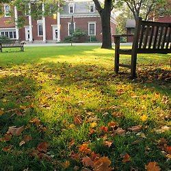 Sharon, CT Maple leaves and a bench in the town green in Sharon, Connecticut.  The town hall is in the background.