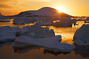 Giant icebergs at sunset in the Bellinghausen Sea, from  Booth Island, Antarctica.