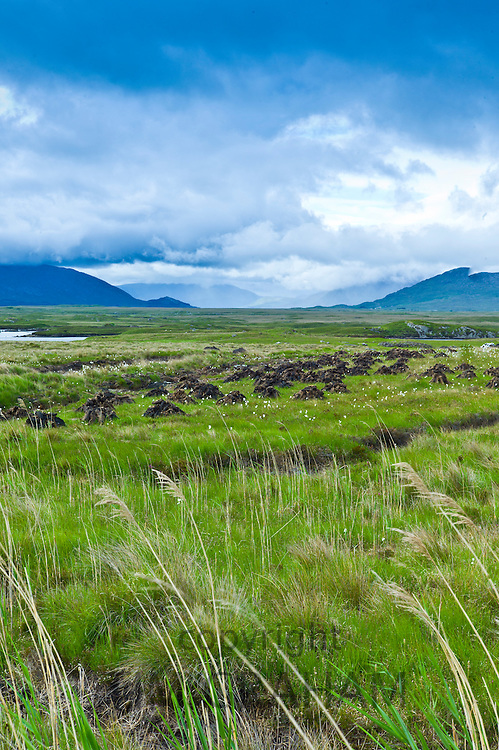 Connemara Landscape and Peat Bog, The Old Bog Road near Roundstone, County Galway, Ireland