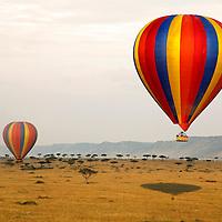 Africa, Kenya, Maasai Mara. Hot-Air Ballooning over the Maasai Mara.