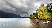 Fall colors along Lake McDonald, Glacier National Park.