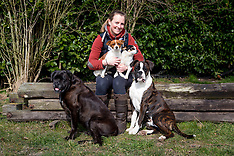 Kara Bosman dogs 2016