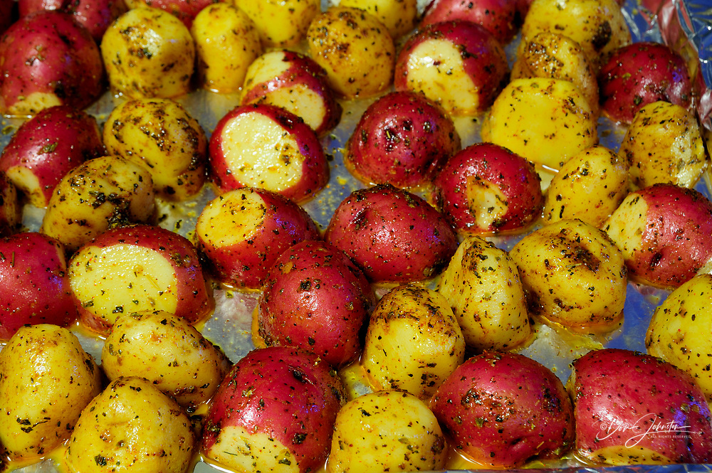 Red and yellow potatoes ready for the oven, Lively, Ontario, Canada