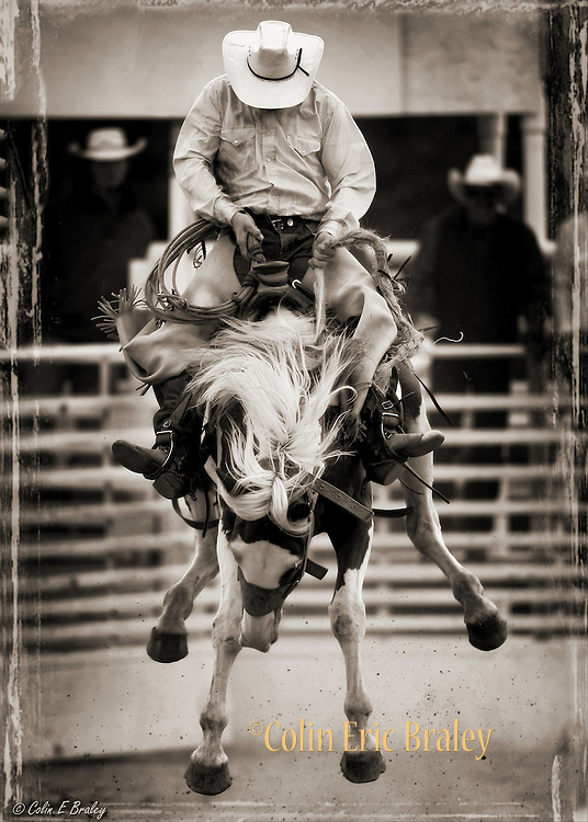 """COWBOY RODEO--Cowboys from the region's cattle ranches take part in the saddle bronc riding competition at the annual Ranch Hand Rodeo in Randolph, Utah, August 29, 2009. Workers from various ranches in the region battle for bragging rights in the event many call one of the few """"true cowboy"""" experiences left in the west."""
