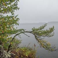 Fog envelops islands on Lake of the Woods, Ontario, Canada.