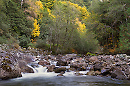 Fall colours along Silverhope Creek in Silver Lake Provincial Park and Hope, British Columbia, Canada.