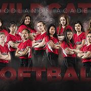 Softball - Poster
