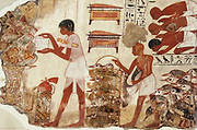 These paintings are parts of a wall showing Nebanum inspecting geese and cattle.  He watches as farmers bring the animals to him while his scribes record the number of animals for him.