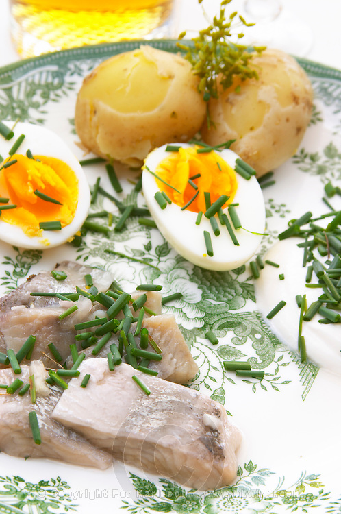 Traditional Swedish summer lunch with marinated herring sill, boiled new potatoes, egg, sour cream, chive, knackebrod dry hard bread with butter and cheese, glass of beer and ice cold aquavit. Sweden, Europe.