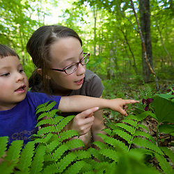 Two kids look at a purple trillium in Skinner State Park in Hadley, Massachusetts.  Holyoke Range.  Connecticut River valley.