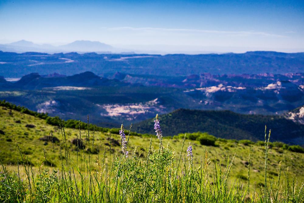Landscape at Grande Escalante National Park in Utah. ©justinalexanderbartels.com