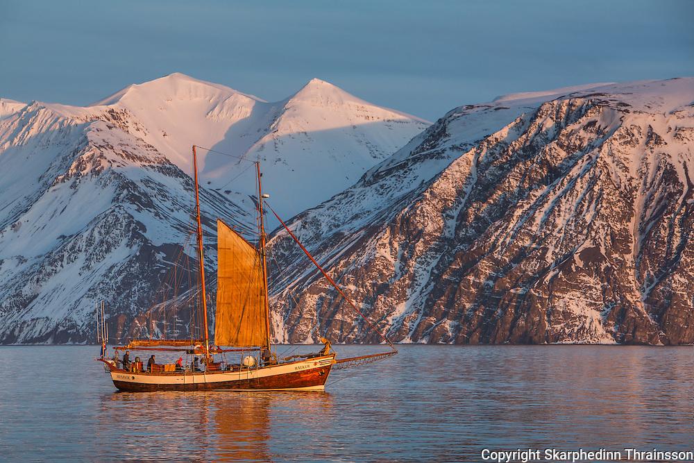 Sailing in Skjálfandi