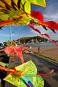Kites for sale at Bai Truoc (Front Beach), with Hang Dua Bay and Small Mountain (Nui Nho) in background. Vung Tau, Vietnam