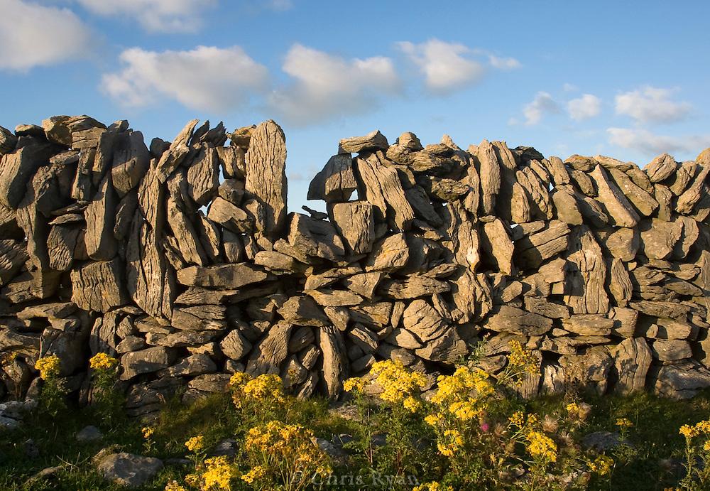 Old stone wall, County Clare, Ireland