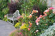 Hillside Cottage - July