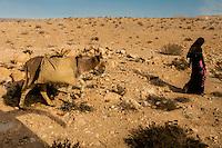 Bedouin woman and donkey, Negev Desert, Israel.