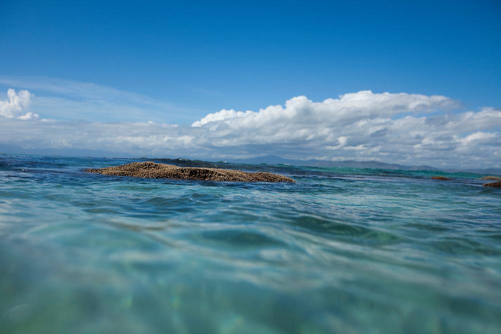 Fiji, Namotu Island, island detail, shoreline