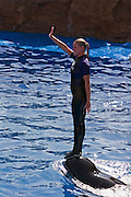 USA, SeaWorld San Diego California, Dolphin show