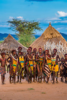 A group of Hamer tribe women walking through their village, Omo Valley, Ethiopia.