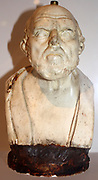 Male bust, possibly Chrysippus. Circa 276-206 BC. Copy of a plaster original.