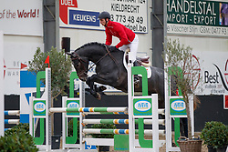 120, Cohiba By Picobello Z, Awouters Yves, BEL<br /> BWP hengstenkeuring - Meerdonk 2018<br /> © Hippo Foto - Dirk Caremans<br /> 17/03/2018