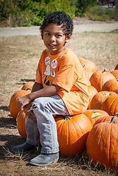 Boy in Halloween pumpkin patch, Mitchell Lake Audubon Center, San Antonio, Texas, USA.