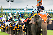 "28 AUGUST 2014 - BANGKOK, THAILAND:     Elephants and their mahouts go into the lunch time fruit buffet for the elephants at the King's Cup Elephant Polo Tournament at VR Sports Club in Samut Prakan on the outskirts of Bangkok, Thailand. The tournament's primary sponsor in Anantara Resorts. This is the 13th year for the King's Cup Elephant Polo Tournament. The sport of elephant polo started in Nepal in 1982. Proceeds from the King's Cup tournament goes to help rehabilitate elephants rescued from abuse. Each team has three players and three elephants. Matches take place on a pitch (field) 80 meters by 48 meters using standard polo balls. The game is divided into two 7 minute ""chukkas"" or halves.   PHOTO BY JACK KURTZ"