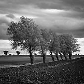 Walsham Le Willows, Suffolk 2009