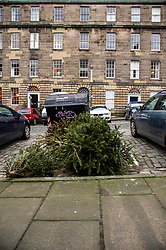 Christmas trees await appropriate disposal in one of Edinburgh's most expensive streets, Scotland Street, in the New Town<br /> <br /> Ger Harley; EEm