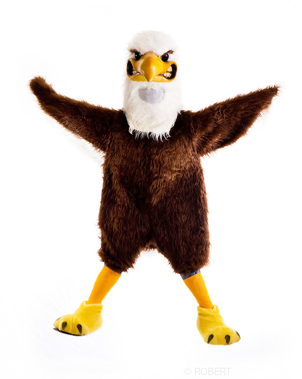Post University. Swoop, sport mascot..©2008 RobertFalcettiStudio