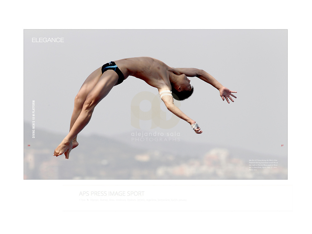 Moments in the Sport of Swimming. Magazine ISSUE 2 edited by apspressimage -photo agency - Images Sports- Project of author for Juan Antonio Samaranch Olympic and Sports Museum in Barcelona. Collection- Photographs by Alejandro Sala