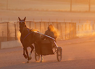 Town of Wallkill, New York  - A harness racing horse and trainer work out on a cold morning at the Mark Ford Training Center on  Dec.12, 2011.