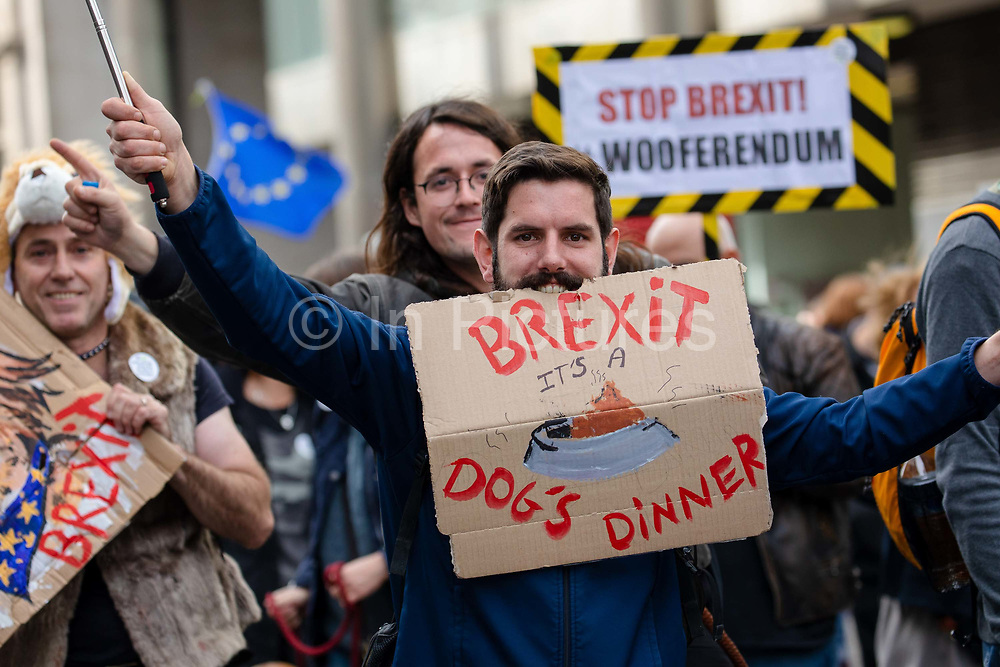 A man with a Brexit, its a Dogs Dinner placard joins pet owners to take part in an anti Brexit Wooferendum rally on October 07, 2018 in London, England to protest against Britain leaving the European Union.