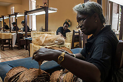 A woman works in the selection process of tobacco leaf during the 18th International Habano Cigar Festival, at the Cohiba tobacco factory, in El Laguito, Havana, Cuba, on March 3, 2016. The 18th International Habano Cigar Festival is held from Feb. 29 to March 4. EXPA Pictures © 2016, PhotoCredit: EXPA/ Photoshot/ Joaquin Hernandez<br /><br />*****ATTENTION - for AUT, SLO, CRO, SRB, BIH, MAZ only*****