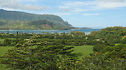Pan, Hanalei Bay Lookout, Kauai, Hawaii