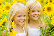 Portrait of cute female twins looking aside and smiling in sunflower field