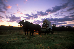 man riding through a field in a covered wagon