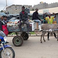 A team of rubbish collectors with the donkey and cart, Mukuru Kwa Njenga, Nairobi.