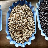 Nederland, Amsterdam , 16 maart 2012..Starbucks Roasting Plant in Amsterdam..Diverse soorten en gebrande koffiebonen..Starbucks Roasting Plant in Amsterdam. Several raw and roasted beans.