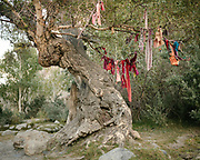 A tree decorated with colorful cloth. Pre-Ismalic shrine. The traditional life of the Wakhi people, in the Wakhan corridor, amongst the Pamir mountains.