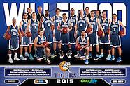 2015 WBA WABL & SBL Team Photos