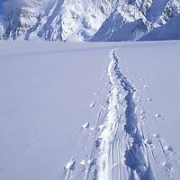 USA, Alaska, Denali National Park, Tracks left by climbing expedition in fresh snow on Kahiltna Glacier on Mount McKinley climb